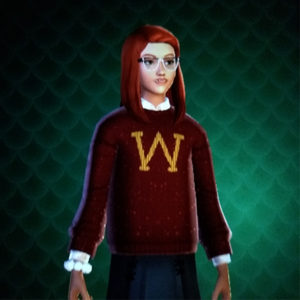 Screenshot of Bill Weasley friendship reward sweater