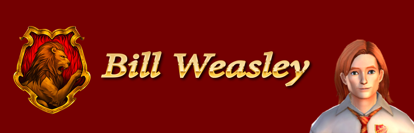 Bill-weasley-friendship-guide-hogwarts-mystery-school