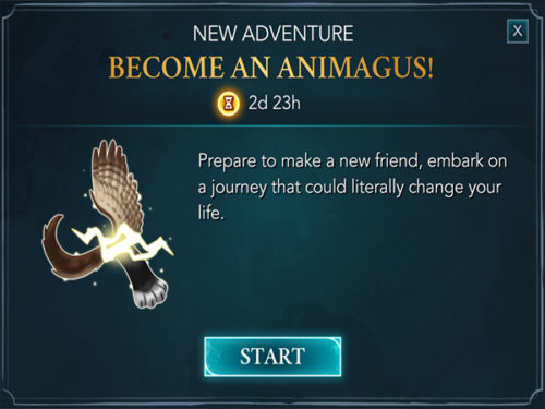 become an animagus in hogwarts mystery