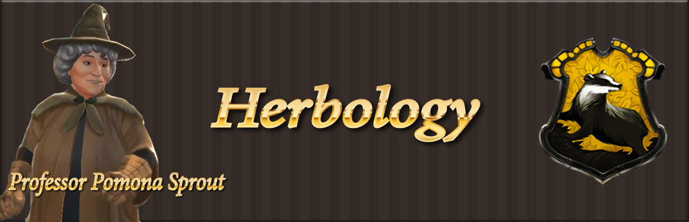 banner for hogwarts mystery school herbology class guide