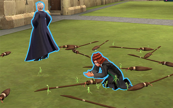 capture bowtruckles on the quidditch pitch