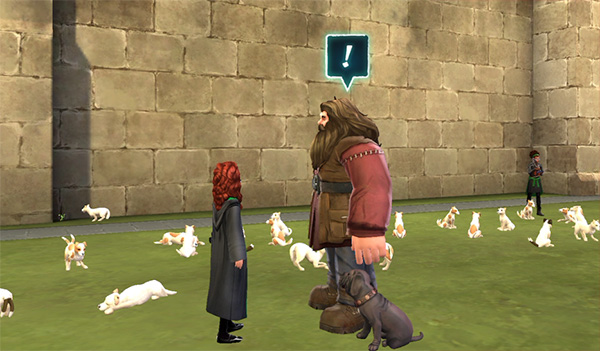 cute crups all over training grounds hogwarts mystery