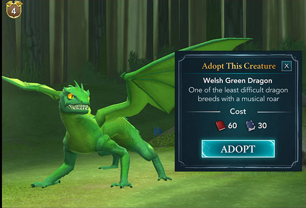 welsh green dragon adoption magizoology