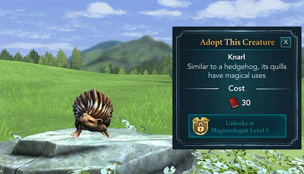 hogwarts mystery knarl adoption