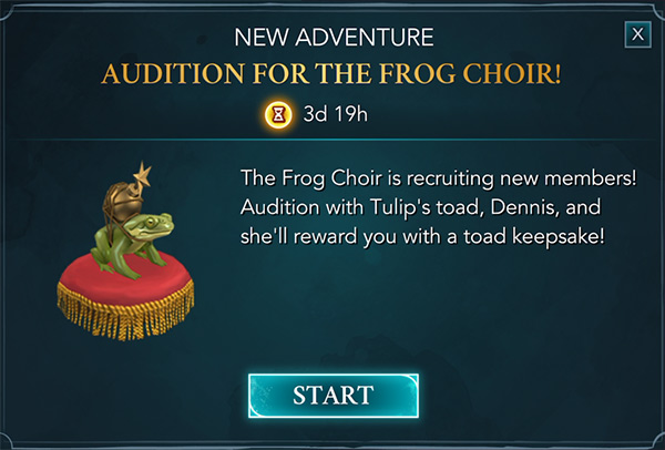 frog choir event guide