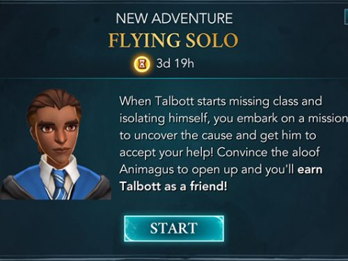 talbott winger flying solo adventure guide