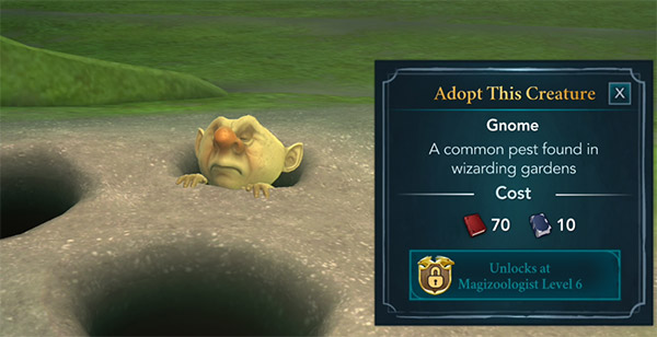 gnome magical creature reserve adoption